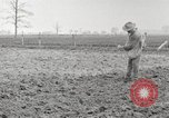 Image of planting of potatoes United States USA, 1920, second 2 stock footage video 65675066807