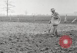 Image of planting of potatoes United States USA, 1920, second 3 stock footage video 65675066807