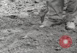 Image of planting of potatoes United States USA, 1920, second 9 stock footage video 65675066807