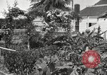 Image of Horticulturalist Luther Burbank and his experimental gardens Santa Rosa California USA, 1917, second 3 stock footage video 65675066832
