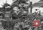 Image of Horticulturalist Luther Burbank and his experimental gardens Santa Rosa California USA, 1917, second 8 stock footage video 65675066832