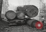 Image of lumbering United States USA, 1917, second 3 stock footage video 65675066833