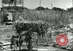Image of Cape Rasocolmo Sicily Italy, 1943, second 3 stock footage video 65675066886