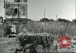Image of Cape Rasocolmo Sicily Italy, 1943, second 5 stock footage video 65675066886