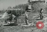 Image of Allied soldiers Sicily Italy, 1943, second 3 stock footage video 65675066887
