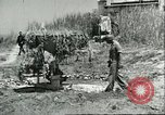 Image of Allied soldiers Sicily Italy, 1943, second 9 stock footage video 65675066887