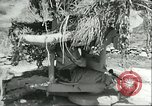 Image of Allied soldiers Sicily Italy, 1943, second 12 stock footage video 65675066887