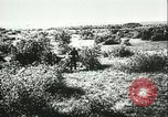 Image of German artillery Eastern Front European Theater, 1943, second 7 stock footage video 65675066911
