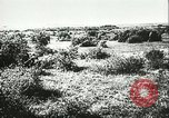 Image of German artillery Eastern Front European Theater, 1943, second 8 stock footage video 65675066911