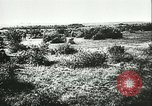 Image of German artillery Eastern Front European Theater, 1943, second 9 stock footage video 65675066911