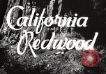 Image of state parks California United States USA, 1935, second 2 stock footage video 65675066949