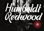 Image of Humboldt Redwoods State Park California United States USA, 1935, second 1 stock footage video 65675066950