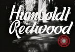 Image of Humboldt Redwoods State Park California United States USA, 1935, second 3 stock footage video 65675066950