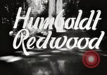 Image of Humboldt Redwoods State Park California United States USA, 1935, second 4 stock footage video 65675066950