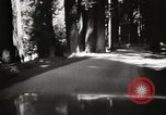 Image of Humboldt Redwoods State Park California United States USA, 1935, second 12 stock footage video 65675066950