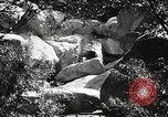 Image of Cuyamaca Rancho State Park California United States USA, 1935, second 8 stock footage video 65675066955