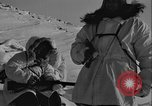Image of American troops Greenland, 1954, second 8 stock footage video 65675067102