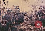 Image of Peleliu operation Peleliu Palau Islands, 1944, second 11 stock footage video 65675067114