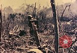 Image of Peleliu operation Peleliu Palau Islands, 1944, second 12 stock footage video 65675067116