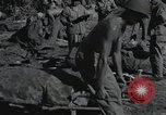Image of invasion of Peleliu Peleliu Palau Islands, 1944, second 3 stock footage video 65675067129