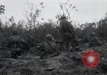 Image of invasion of Peleliu Peleliu Palau Islands, 1944, second 10 stock footage video 65675067136