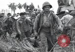 Image of invasion of Peleliu Peleliu Palau Islands, 1944, second 1 stock footage video 65675067137