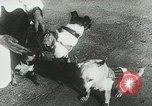 Image of Soviet space research with canines Soviet Union, 1957, second 10 stock footage video 65675067231