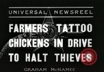 Image of ink mark proves chicken stealing Georgetown Washington DC USA, 1936, second 3 stock footage video 65675067257