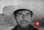 Image of farmers work Brooklyn New York City USA, 1944, second 4 stock footage video 65675067308