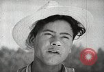 Image of farmers work Brooklyn New York City USA, 1944, second 6 stock footage video 65675067308