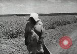 Image of Farming in America during wartime United States USA, 1944, second 7 stock footage video 65675067309