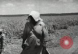 Image of Farming in America during wartime United States USA, 1944, second 8 stock footage video 65675067309