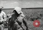 Image of Farming in America during wartime United States USA, 1944, second 9 stock footage video 65675067309