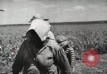 Image of Farming in America during wartime United States USA, 1944, second 10 stock footage video 65675067309
