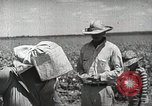 Image of Farming in America during wartime United States USA, 1944, second 11 stock footage video 65675067309