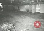 Image of Typhoon Billie Kobe Japan, 1967, second 7 stock footage video 65675067388