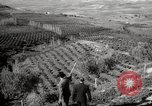 Image of Guide with visitors at a farm Morocco North Africa, 1942, second 8 stock footage video 65675067421