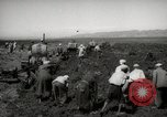 Image of Tilling the soil by machine and by animal Morocco North Africa, 1942, second 5 stock footage video 65675067423