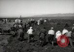 Image of Tilling the soil by machine and by animal Morocco North Africa, 1942, second 9 stock footage video 65675067423