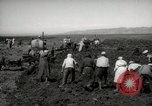 Image of Tilling the soil by machine and by animal Morocco North Africa, 1942, second 10 stock footage video 65675067423