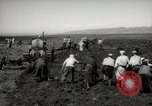 Image of Tilling the soil by machine and by animal Morocco North Africa, 1942, second 11 stock footage video 65675067423