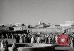 Image of Camels offered for sale at outdoor market in Marrakech Morocco North Africa, 1942, second 5 stock footage video 65675067433