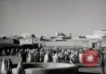 Image of Camels offered for sale at outdoor market in Marrakech Morocco North Africa, 1942, second 6 stock footage video 65675067433