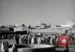 Image of Camels offered for sale at outdoor market in Marrakech Morocco North Africa, 1942, second 7 stock footage video 65675067433