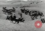 Image of farm activities Kazakhstan Soviet Union, 1943, second 7 stock footage video 65675067478