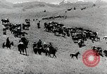 Image of farm activities Kazakhstan Soviet Union, 1943, second 10 stock footage video 65675067478