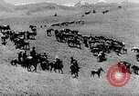 Image of farm activities Kazakhstan Soviet Union, 1943, second 11 stock footage video 65675067478