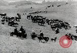Image of farm activities Kazakhstan Soviet Union, 1943, second 12 stock footage video 65675067478