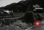 Image of Japanese farm Sugata Gifu Prefecture Japan, 1950, second 5 stock footage video 65675067530