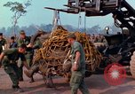 Image of Elephant airlifted Vietnam, 1968, second 5 stock footage video 65675067651